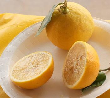 ベルガモットはグレープフルーツと並んで最も人気のあるアロマオイルです。