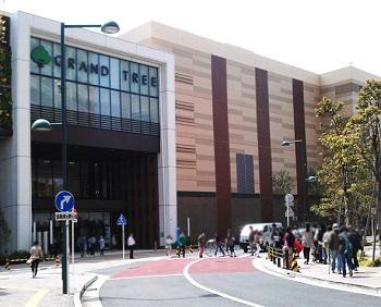 グランツリー武蔵小杉は東急東横線の駅前にあります